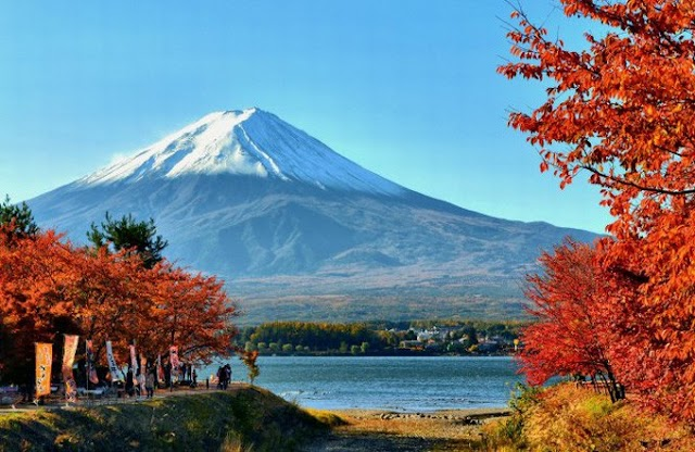 7 places to watch the most beautiful autumn leaves in Japan