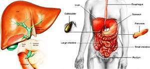 Obat Hepatitis Resep Dokter