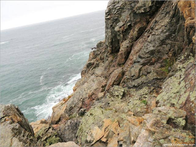 Otter Cliff en el Parque Nacional de Acadia en Maine