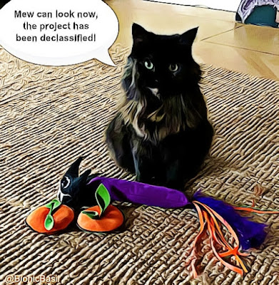 Crafting with Cats @BionicBasil® halloween special - bats, pumpkin top and kickers