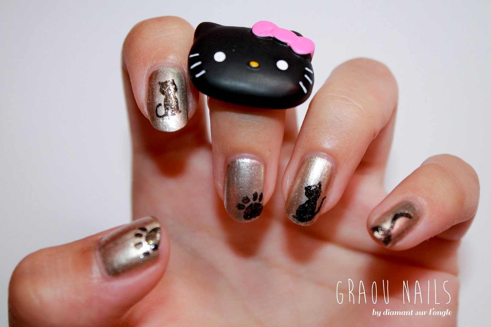 http://diamantsurlongle.blogspot.fr/2013/08/graou-nailstorming.html