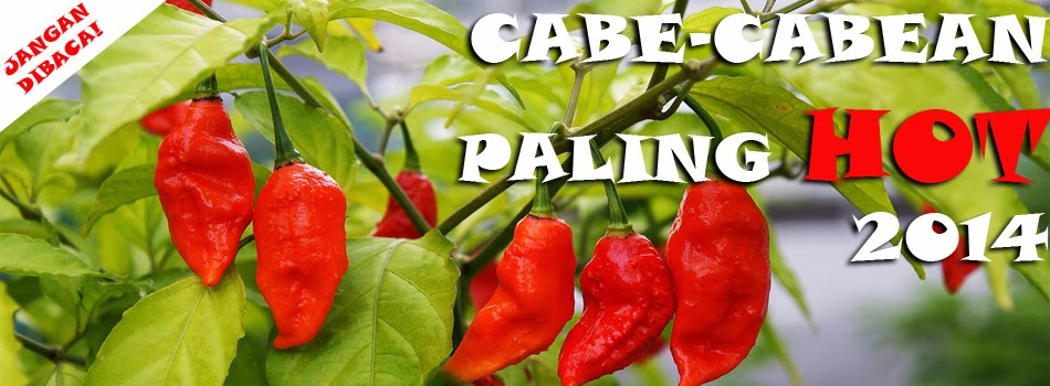 Cabe-cabean hot