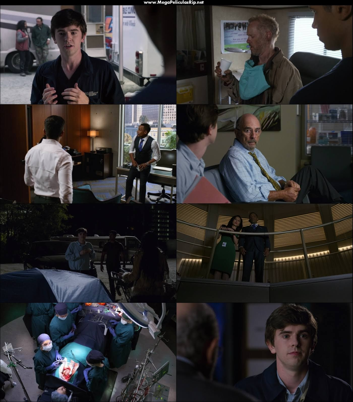 The Good Doctor Temporada 2 720p Latino