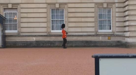 Guarda Palácio de Buckingham engraçado
