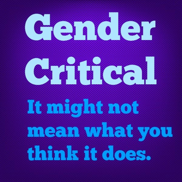 The Intersex Roadshow Trans Exclusionary Radical Feminists And Intersex Experience