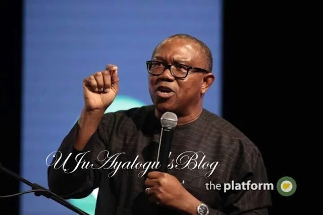 Anambra poll: I didn't give Peter Obi $1m bribe — Maduka