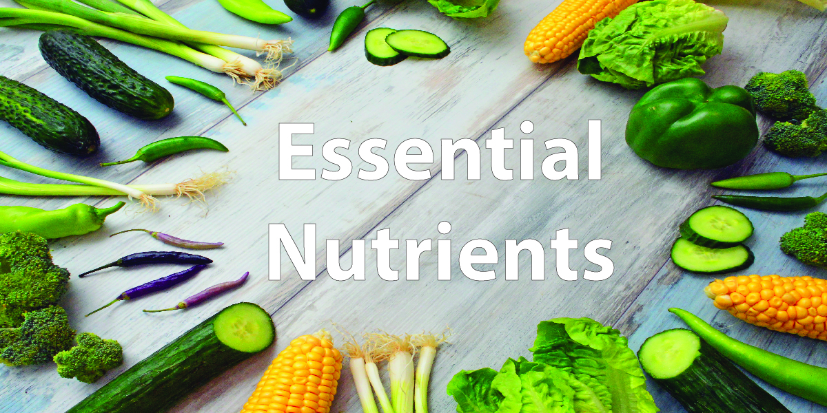 Picture for Nutrients