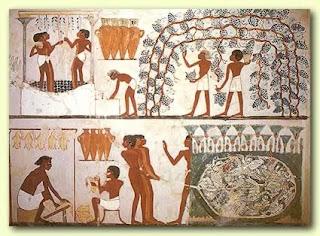 Ancient Egyptian Farming