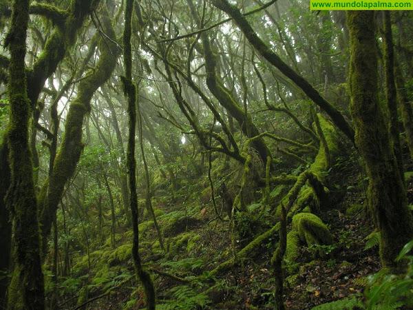 Transición Ecológica aprueba las bases de las subvenciones para las Reservas de la Biosfera