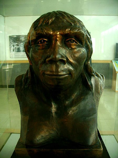 PEKING MAN hoax