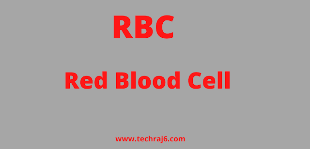 RBC full form, What is the full form of RBC