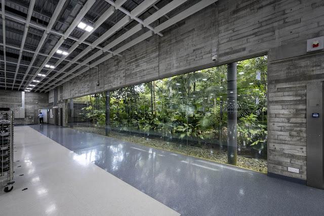 interior iluminado con luz blanca- ventanas grandes hacia jardín verde exterior