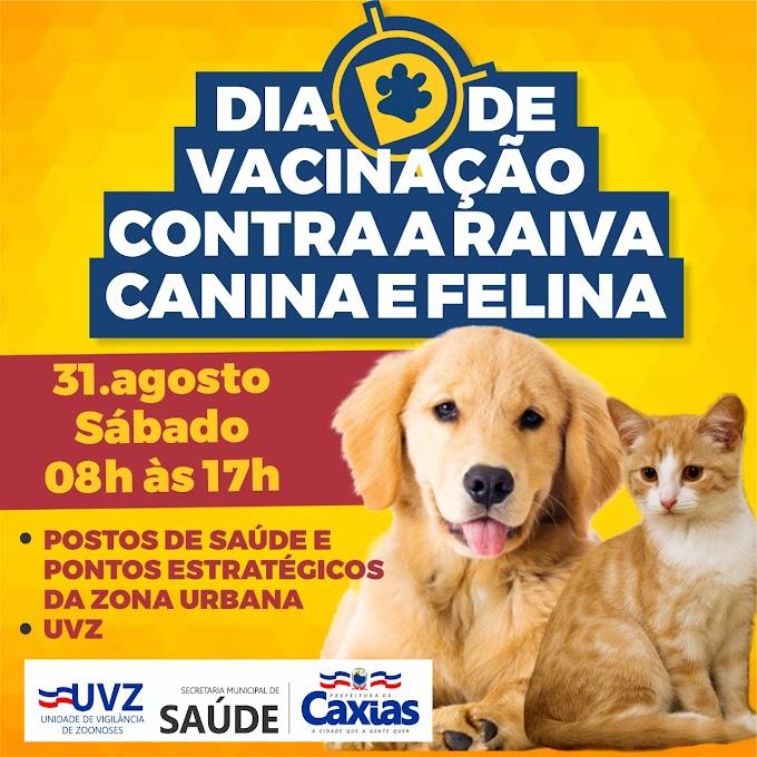 SAÚDE – UVZ realiza Dia D de Vacinação Contra a Raiva neste sábado (31)