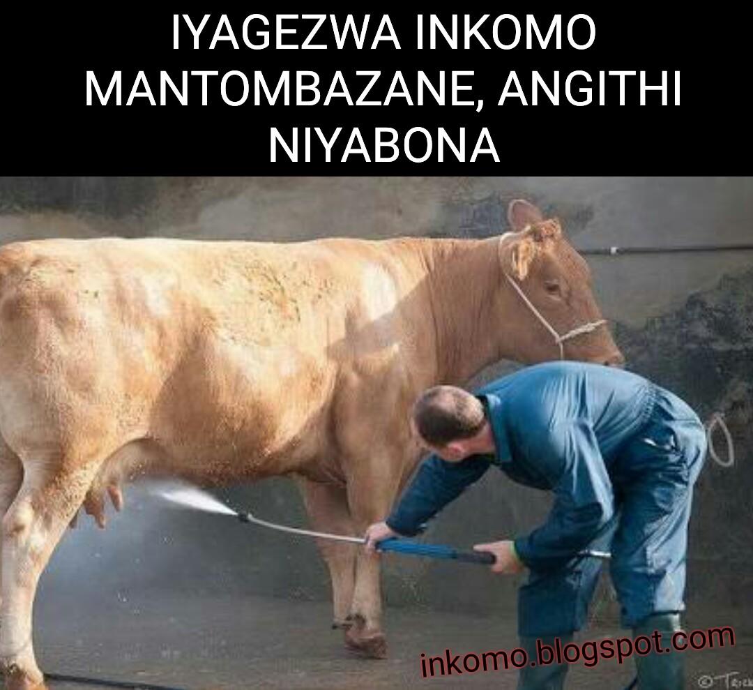 Izindaba zokubhebhana ezizokushiya uqhanyelwe: March 2017