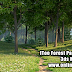 IToo Forest Pack Pro for 3ds Max Plugin