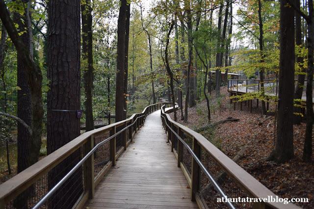 https://1.bp.blogspot.com/-8Ffn9e0lY4s/WGxXuEBsycI/AAAAAAAAIfk/DpnCLiahZUQIZB0CifommBzpc5TOdvH1wCLcB/s640/fernbank-forest-and-wildwoods-001.jpg