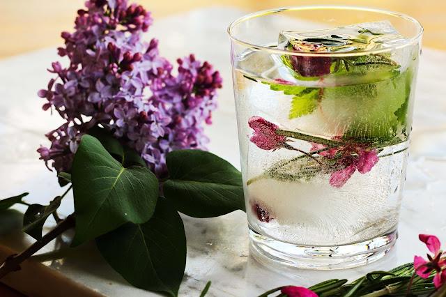 boire-plu-deau,comment,truc,glace,glacon,faire,comment-faire,soi-meme,madame-gin,gin-tonic
