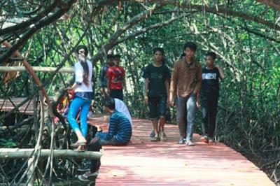 konservasi mangrove rembang