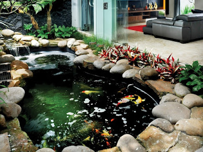 Gambar Desain Kolam Ikan Minimalis