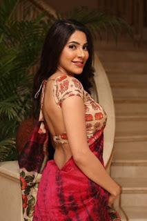 Hot actress nikki tamboli in Kanchana 3 | doti style saree with low cut blouse Navel Queens