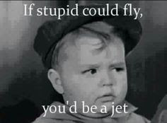 If Stupid could fly you'd be a jet