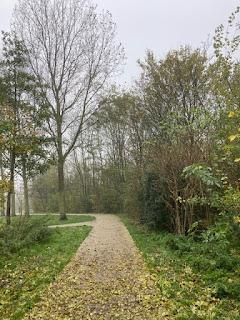 herfst park harlinger bos