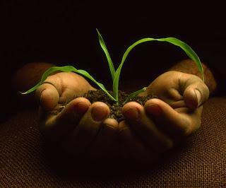 Poemas De Una Mujer Poemas Del Medio Ambiente Y Ecologia