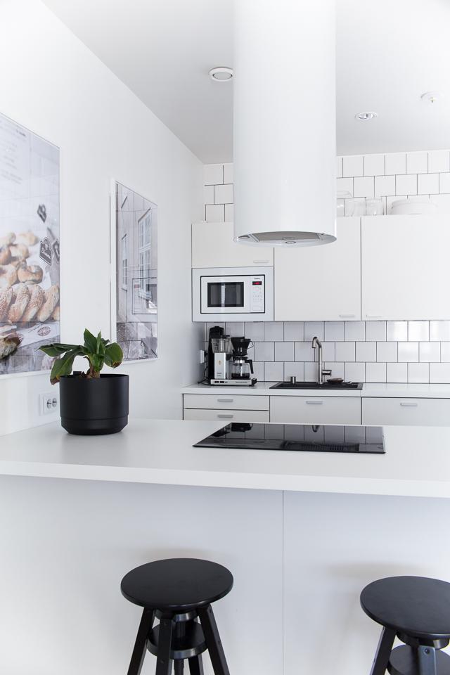 Villa H, keittiön sisustus, valokuvataulu, banaanipuu