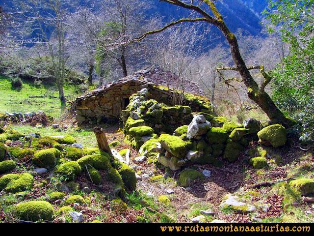 Ruta Pico Vízcares: Cabaña al final del bosque de camno a la majada Degoes