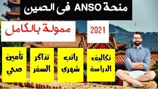 منح ANSO الصينية للدراسات العليا ممولة بالكامل لعام 2021