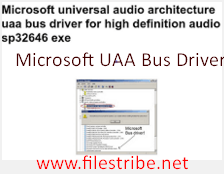 Microsoft UAA Bus Driver Free Download