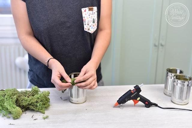 DIY-Anleitung Winterdeko mit Moos.
