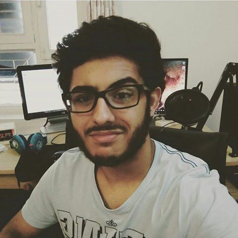 Everything About CarryMinati - Wiki, Age, Income