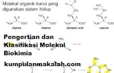 Pengertian dan Klasifikasi Molekul Biokimia