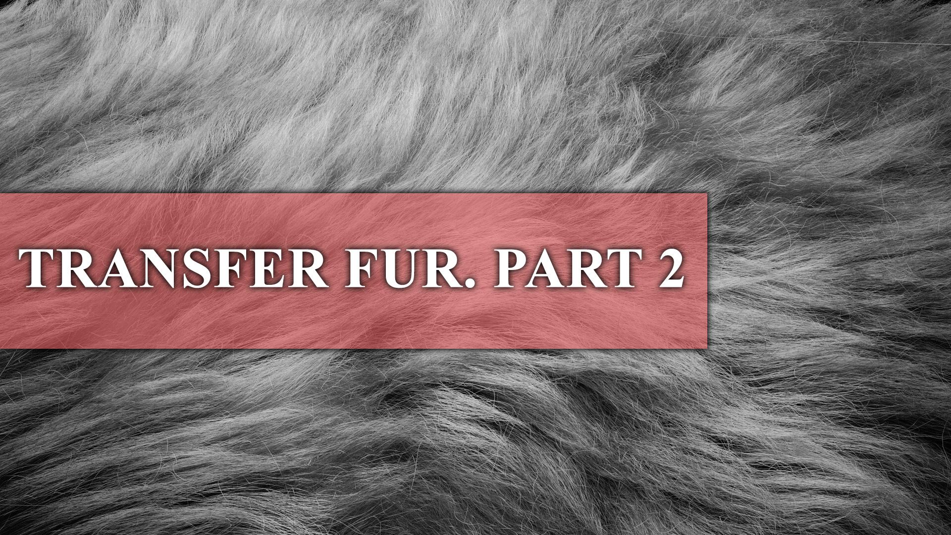 TRANSFER_FUR_PART-2.jpg