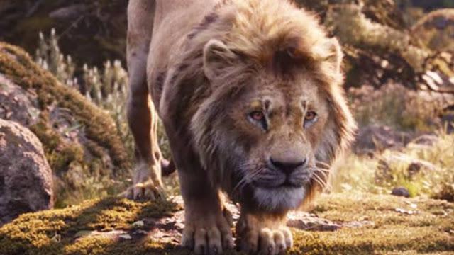 Hakuna Matata do live action de O Rei Leão
