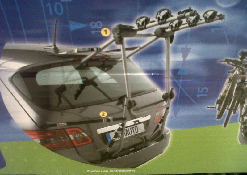 Italian Car Rental Companies