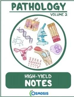 Download Osmosis Pathology High Yield Notes Volume 2 PDF