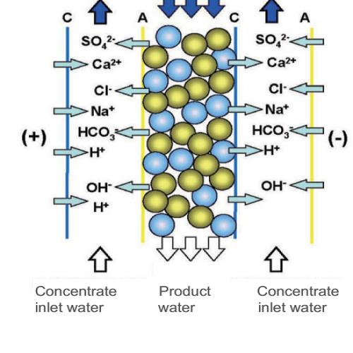 5 Sự khác biệt chính giữa Hệ thống nước RO và EDI