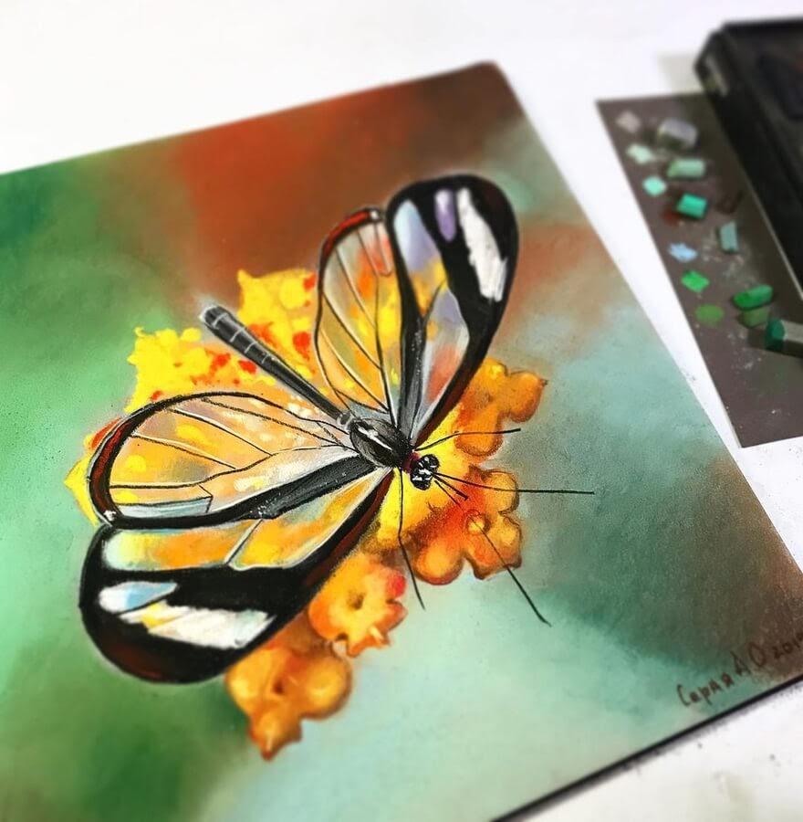 01-Transparent-butterfly-Анастасия-Серая-www-designstack-co