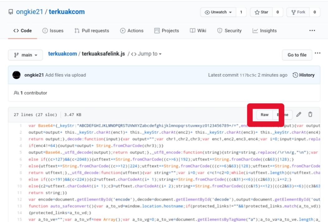 RAW file GitHub