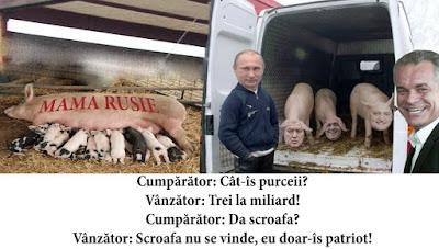 https://nmuseum.blogspot.md/2016/09/importul-de-porcine-din-federatia-rusa.html