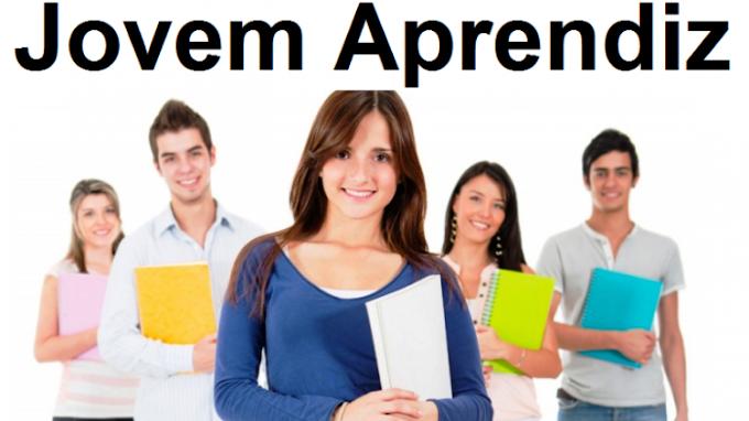 Programa Jovem Aprendiz- Salário de 820,00 - Não é necessário experiência -Vaga Home Office - Matriz/Santo Amaro
