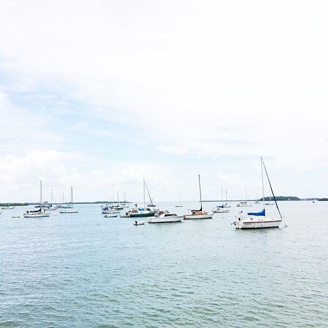 longboat-key-harbor