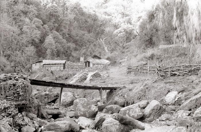 Népal, Pokhara, Annapurna, Banthanti, © L. Gigout, 1990