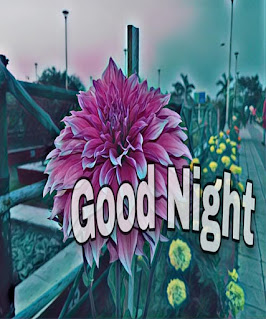 good night image for whatsapp, good night images for whatsapp free download , good night images for whatsapp in hindi , good night images hindi shayari , good night heart images download , Good Night Image in Hindi