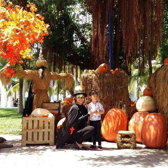 Visit the special pumpkin museum at Vinpearl in Halloween