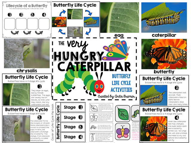 The Very Hungry Caterpillar book study and butterfly life cycle companion activities unit for Kindergarten and First Grade