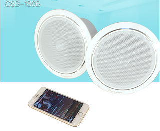 diffusori bluetooth da soffitto
