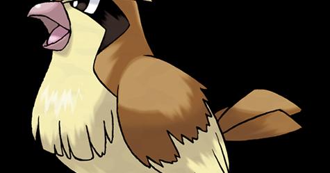 波波配招最佳技能,波波剋星 - Pidgey Pokémon Go 寶可夢精靈圖鑑攻略 - 寶可夢配招圖鑑攻略站